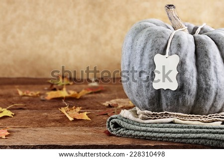 Thanksgiving holiday, green pumpkin still life decoration with with blank greeting card with copy space. Extreme shallow depth of field. - stock photo