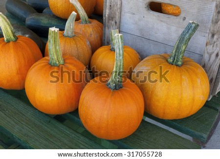 thanksgiving pumpkins on a table at the market for the halloween