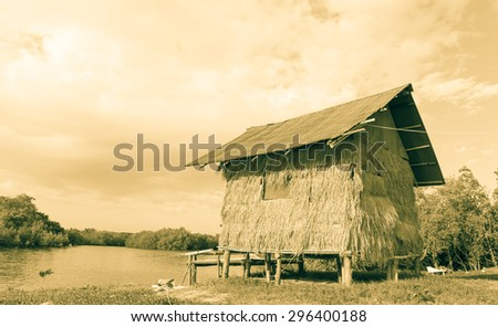 thatched cottage at the beach near mangrove forest in yellow tone - stock photo