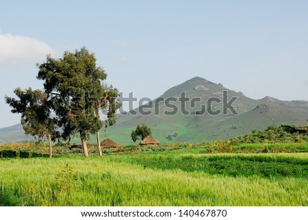 Thatched roof huts, Ethiopian highlands - stock photo