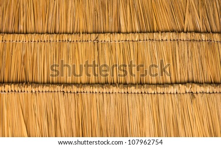 Thatched roof of the straw  show background - stock photo