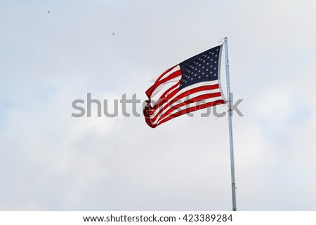 The American National Flag
