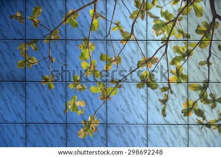 The art of painting green leaf with blue sky background - stock photo