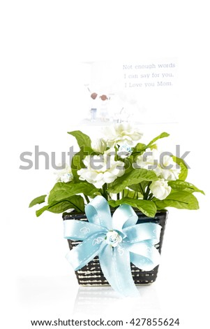 the artificial jasmine flower in the pot at the wooden table with the white background - stock photo