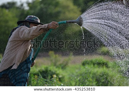 The Asian farmer go watering for vegetables growth in the farmland in the rural scene.