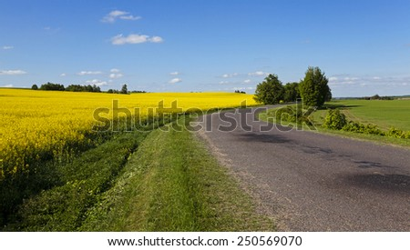 the asphalted road  - stock photo