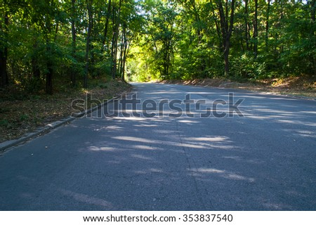 the asphalted road among the green wood in the sunny day in the summer - stock photo