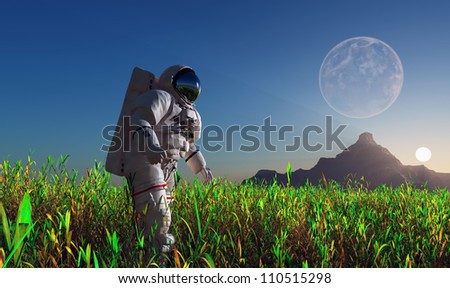 The astronaut on the green grass.