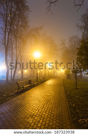 The avenue of city park at night - stock photo