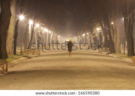 The avenue of city park,  at night in a winter fog  - stock photo
