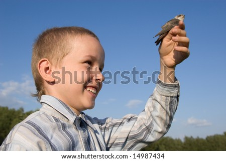 The baby bird of a swallow sits on a hand of the boy