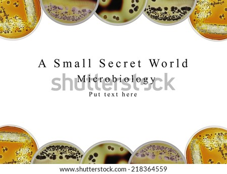 background powerpoint presentation microbiology science show stock