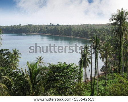 The bay with coconut trees in Thailand