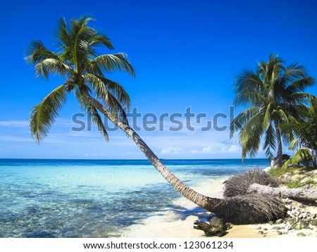 The beach at Queen Cays in Belize - stock photo
