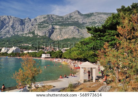 The beach in Makarska is surrounded by pine trees, with a surprisingly long needles. Dalmatia, Croatia.