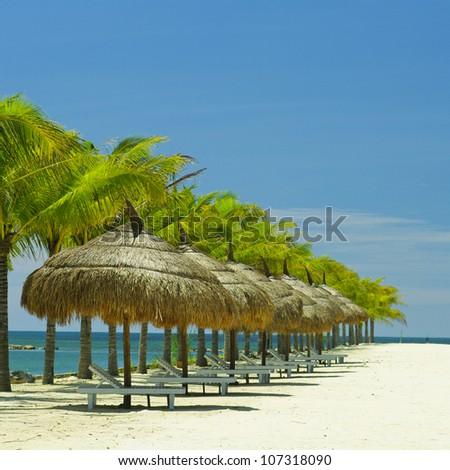 The beach in vietnam sea - stock photo
