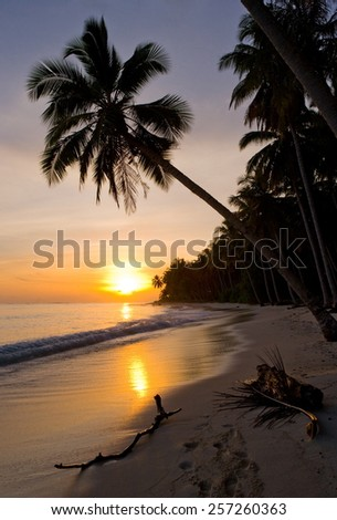 The beach of a tropical island.Breaking Dawn.  Indonesia. illustration excellent.