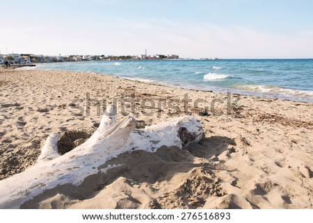 The beach of cost of Apulia: Torre Canne
