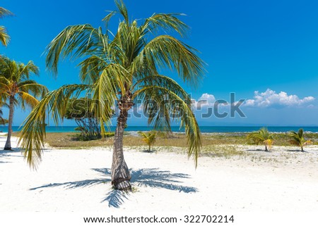 The beautiful and relaxing  island of Cayo Blanco in Cuba - stock photo