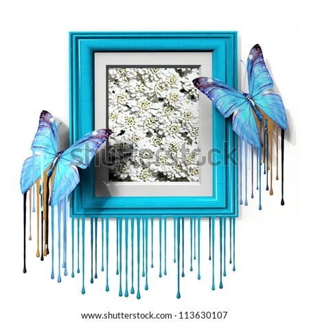 the beautiful butterfly and the frame