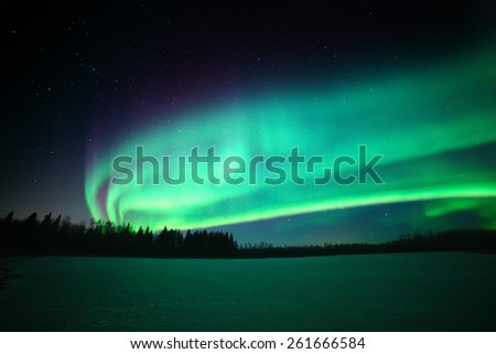 The beautiful colors of the aurora borealis above a frozen lake in northern Canada - stock photo