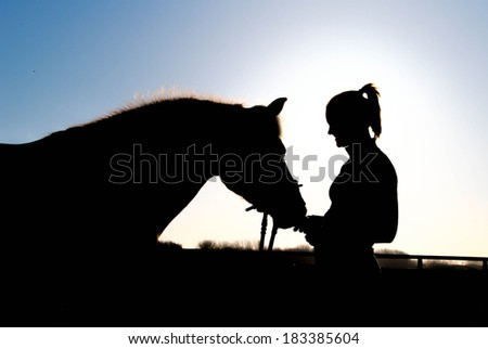 The beautiful Haflinger called ''Wonderful' with her rider at sunset