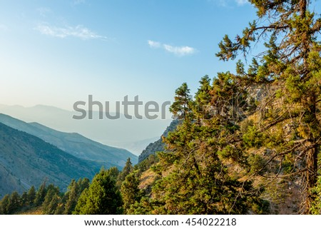 The beautiful mountain scenery. Uzbekistan. Scenic landscape in the mountains Chimgan. In the foreground are pine trees, then mountains, at the bottom is a valley. The blue cloudless sky. - stock photo