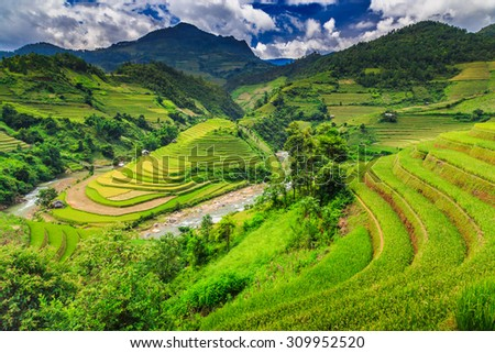 The beautiful Rice terraces valley in Vietnam. - stock photo