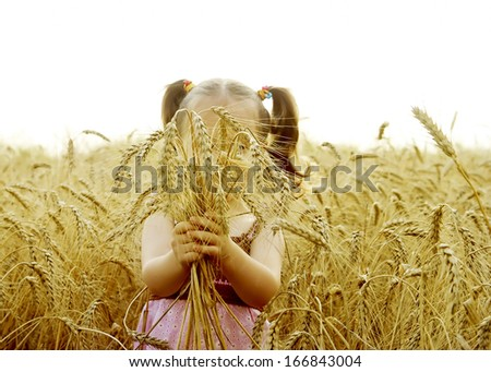 The beautiful small child pulls hands to the sun in the field - stock photo