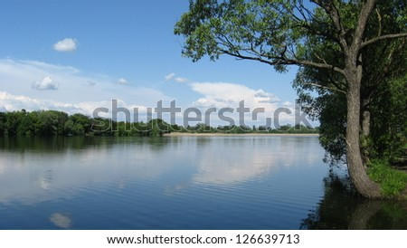 the beautiful summer landscape with river and trees
