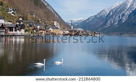 The beautiful town of Hallstatt in Austria with 2 geese - stock photo