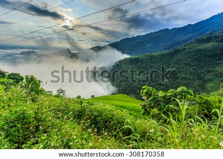 The beautiful valley in Vietnam. - stock photo