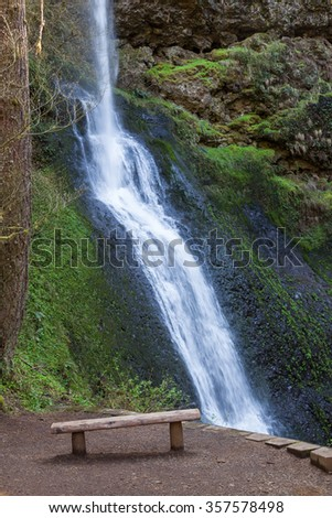 The beautiful Winter Falls with a log slab bench in front located in Silver Falls State Park in Oregon. - stock photo