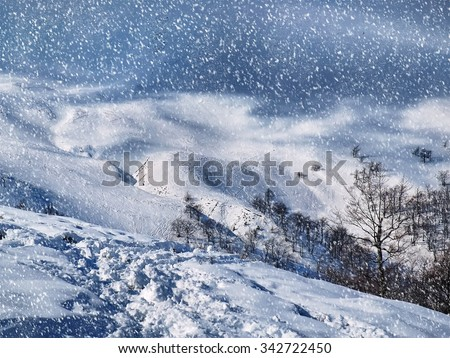 The beautiful winter landscape with falling snow - stock photo