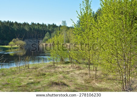The beginning of may on a protected river. Spring landscape, the river and the first greens in the trees.