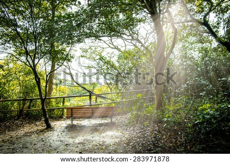 The bench under the sunbeam - stock photo
