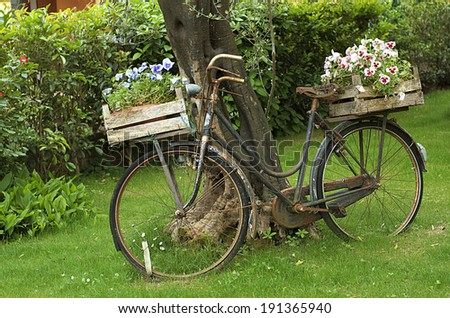 The bicycle and flowers in a garden.