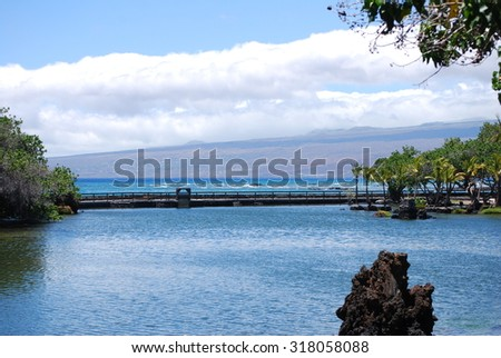 The Big Island of Hawaii; view from the fish conservancy to the ocean