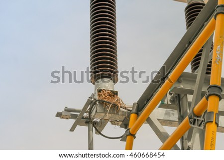 The bird nest on High voltage disconnecting switch