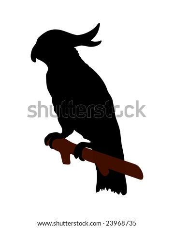 The black silhouette of a cockatoo on white - stock photo
