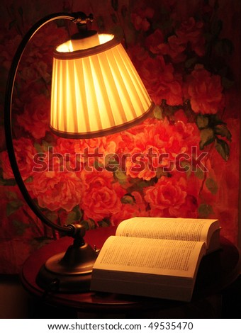 The book - stock photo