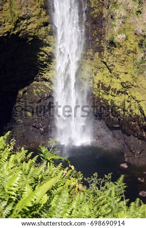 The bottom of a waterfall with a rainbow crossing the cascading water in a rainforest at Akaka Falls State Park in Honomu, Hawaii, USA