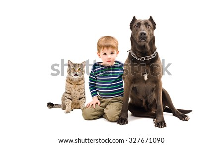 The boy, dog and cat sitting together isolated on white background - stock photo