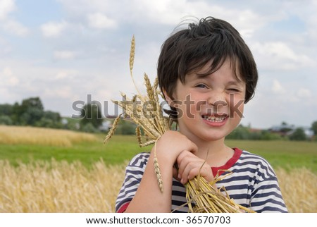 The boy on field of cereal - stock photo