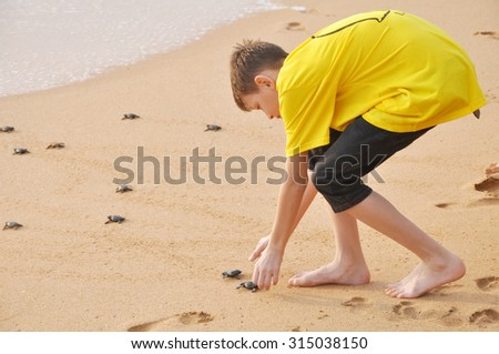 The boy playing with the turtle - stock photo