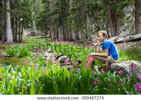 The boy sits on a rock by the stream. Great Basin National Park, Nevada - stock photo