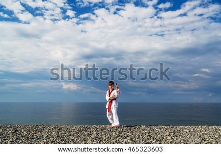The boy training on the beach: Taekwondo, sports