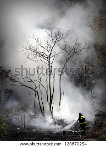 The brave fireman - stock photo