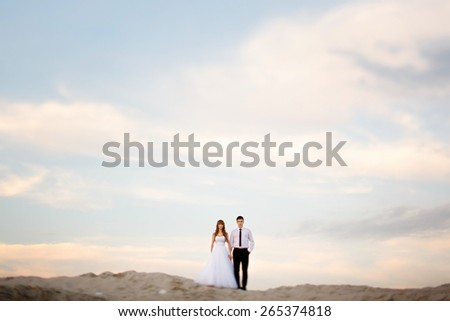 the bride and groom on the beach against the sky - stock photo