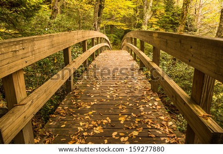 The Bridge that crossed a stream on theTanawha trail on the way up to Rough Ridge. This is located right off the Blue RIdge Parkway neaar Blowing Rock, North Carolina - stock photo